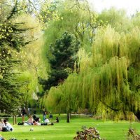 Timetable, costs, how to get there: Parks of Paris
