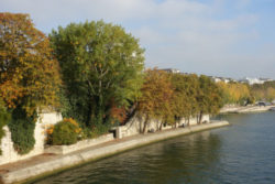 The Baryesquare, enjoy nature in Ile Saint-Louis