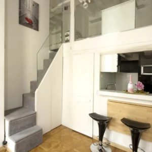 Apartment in the City Centre of Paris