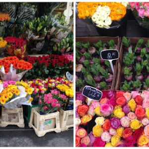 Arrondissement 17, culture and shopping