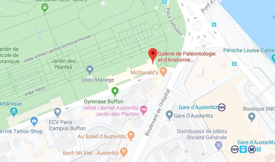 galerie de paleontologie et d anatomie paris
