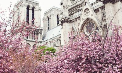 Selected quotes about Paris in Spring